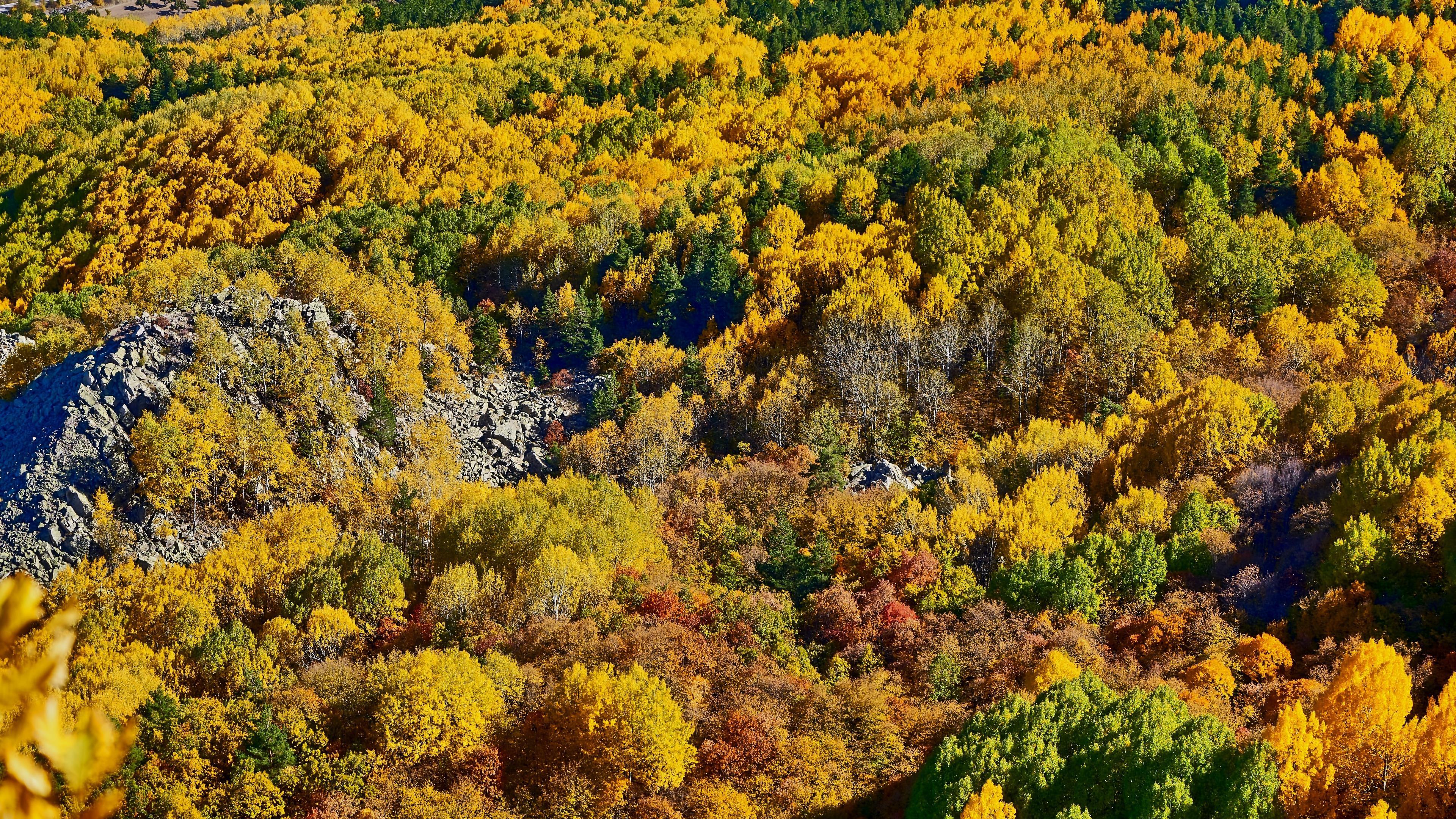 Herbst Hintergrund 3840x2160