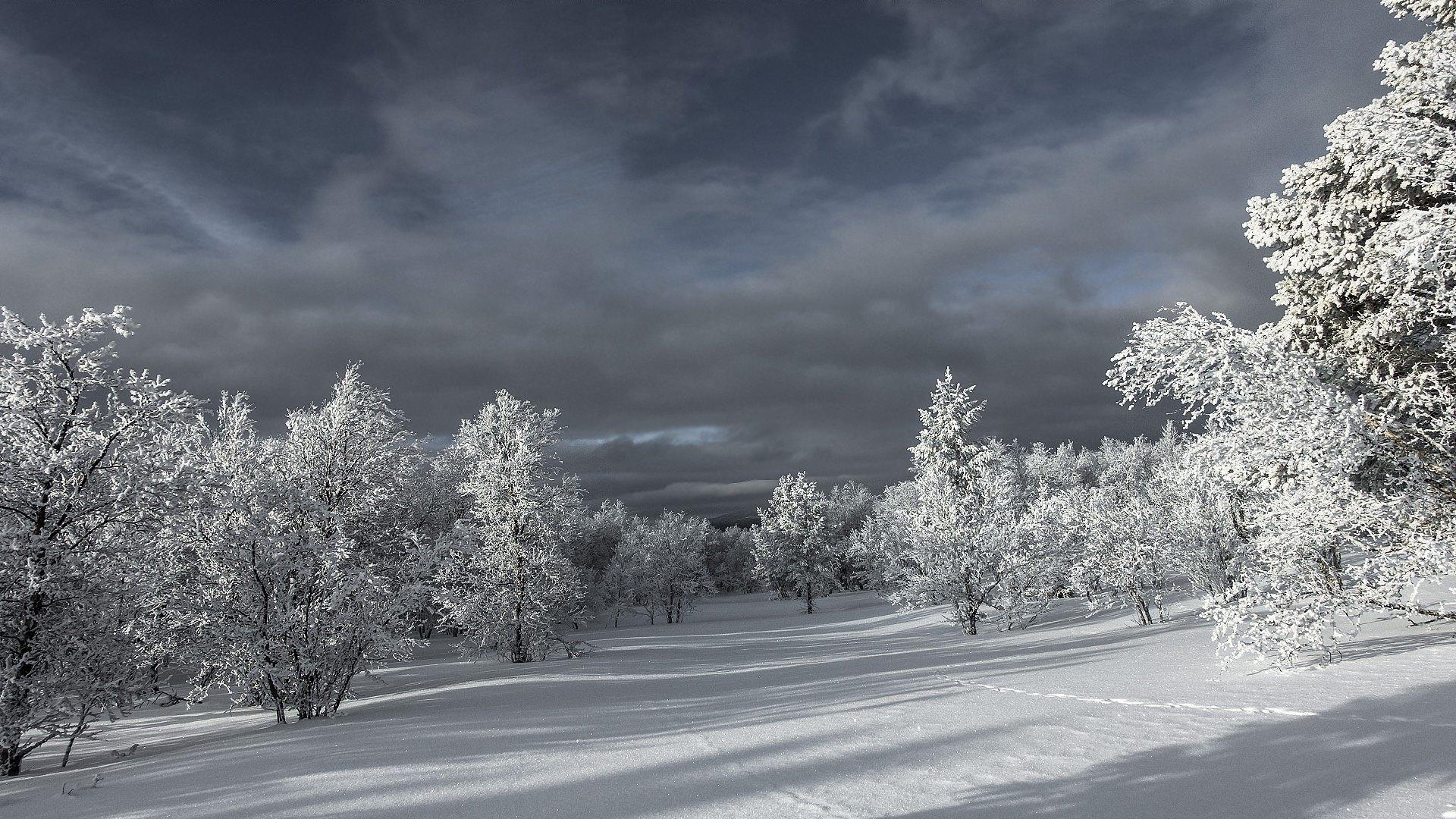 hintergrundbilder winterlandschaft kostenlos